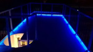 Water Dog Deck Lighted