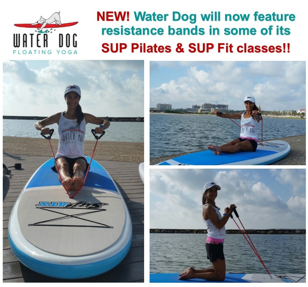 Resistance bands at Water Dog