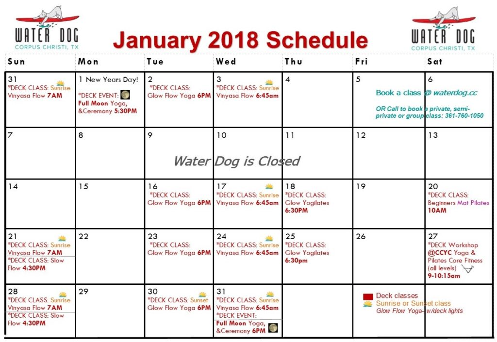 Water Dog Corpus Christi Yoga Schedule