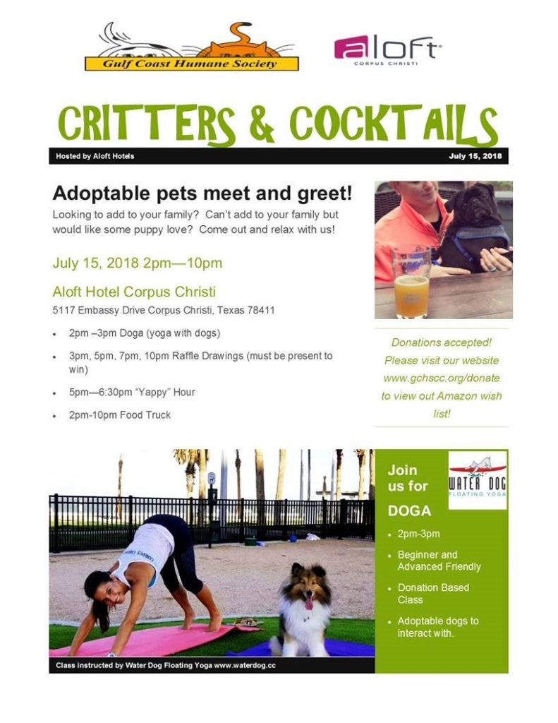 Doga and yoga for adoptable dogs